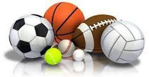 กีฬาอาชีพ